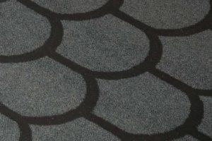 bobroviy hvost gray