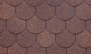 kolchuga brown